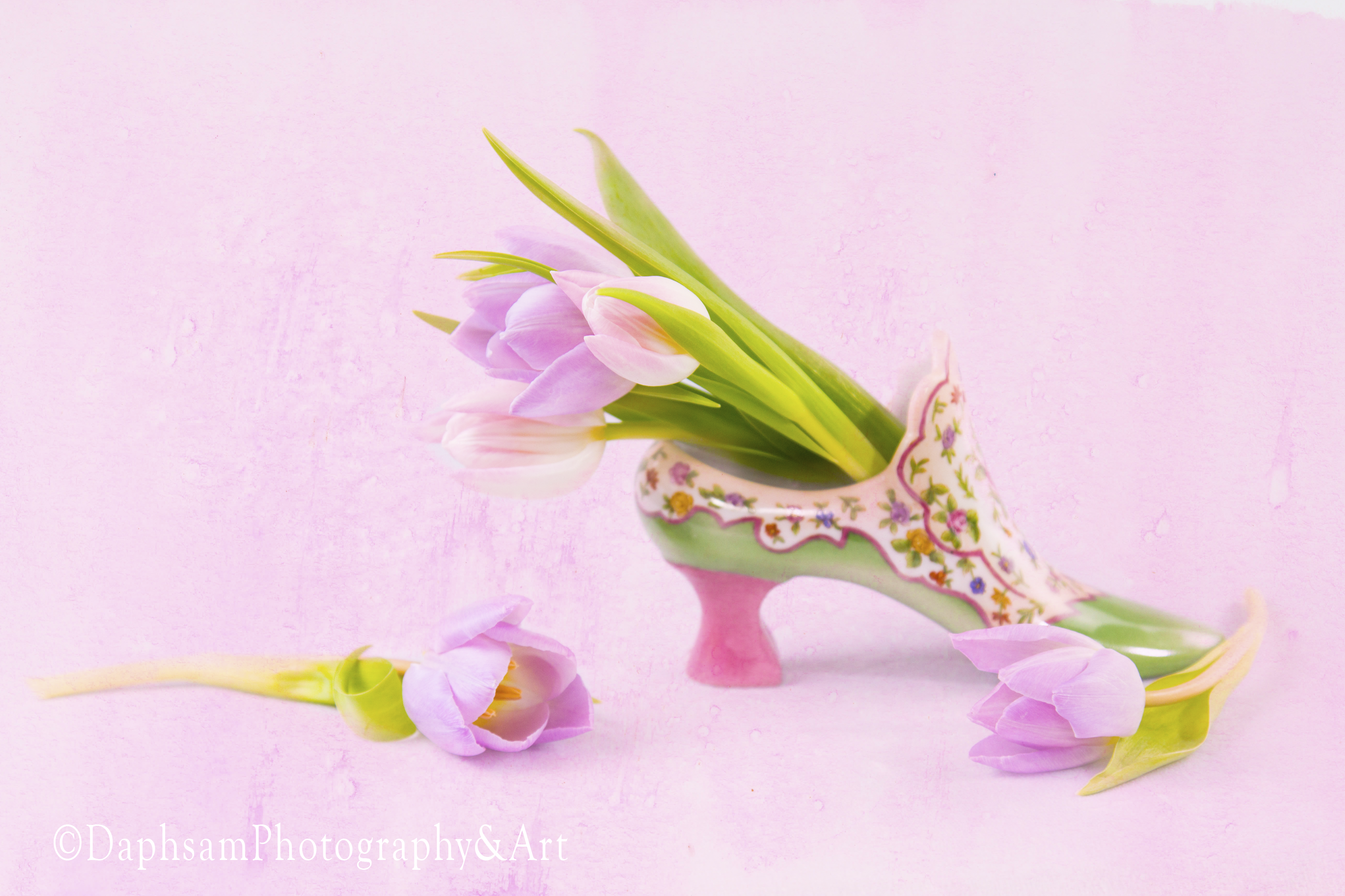 tulips and glassslipper